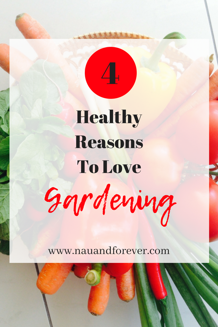 4 Healthy Reasons To Love gardening