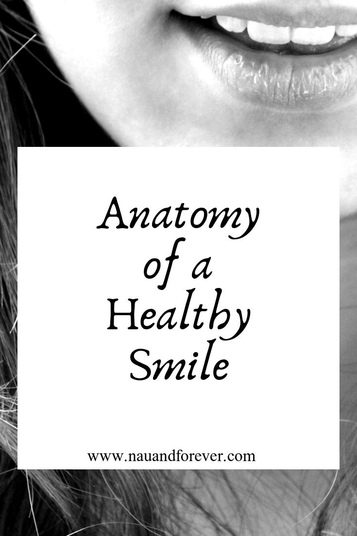 anatomy of a healthy smile